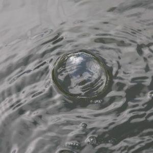 Vijverwater Controle